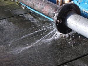 Water Damage 10304